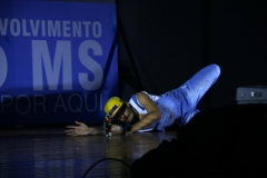Foto Edemir Rodrigues (22)