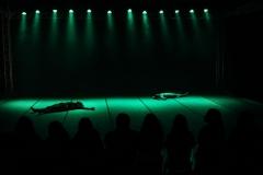 mostra de danças - semana pra dança-4800