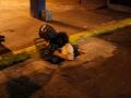 03-28-15 Verdades inversas - flor e espinho teatro - 8858.JPG